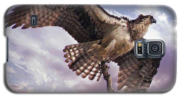 Osprey Wing Galaxy S5 Case