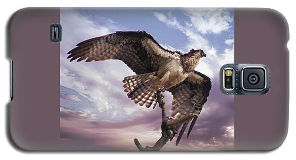 Osprey Wing Galaxy S5 Case