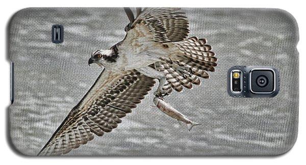 Osprey With Breakfast Galaxy S5 Case