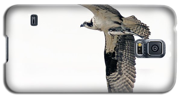 Galaxy S5 Case featuring the photograph Osprey With Fish by Stephen  Johnson
