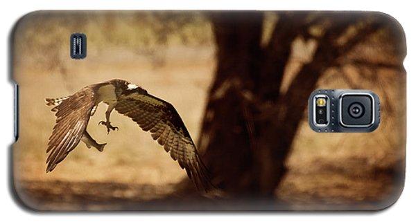 Osprey With Lunch Galaxy S5 Case