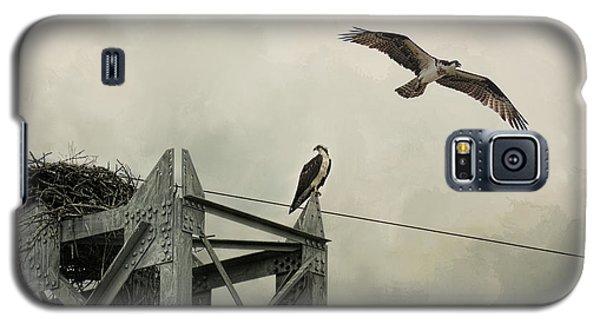 Ospreys At Pickwick Galaxy S5 Case by Jai Johnson