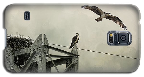 Ospreys At Pickwick Galaxy S5 Case
