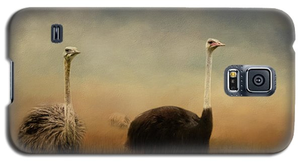 Ostrich Couple Galaxy S5 Case by Jai Johnson