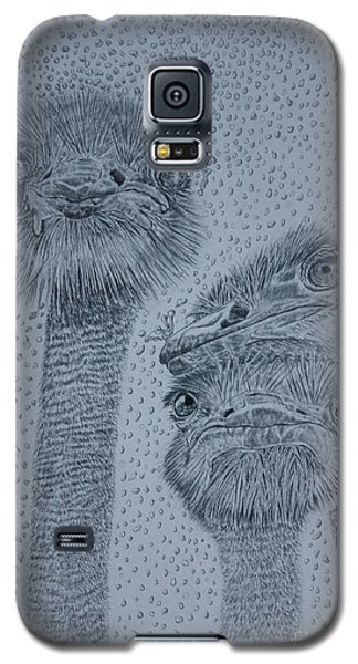 Ostrich Umbrella Galaxy S5 Case