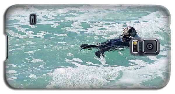 Otter At Montana De Oro Galaxy S5 Case by Michael Rock
