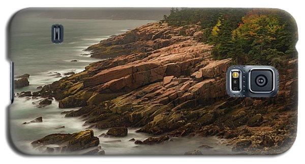 Otter Cliffs Galaxy S5 Case