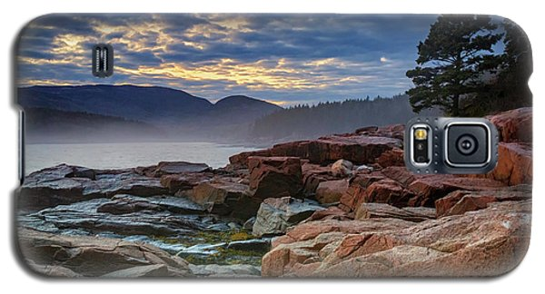 Otter Cove In The Mist Galaxy S5 Case by Rick Berk