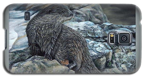 Otter On Rocks Galaxy S5 Case
