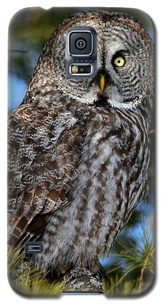 Out Of The Shadows Galaxy S5 Case
