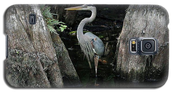Out Standing In The Swamp Galaxy S5 Case by Lamarre Labadie