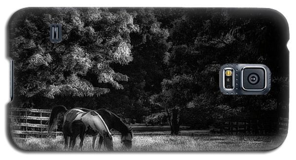 Galaxy S5 Case featuring the photograph Out To Pasture Bw by Mark Fuller
