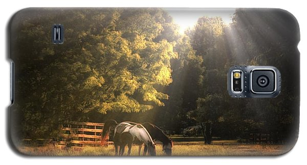 Galaxy S5 Case featuring the photograph Out To Pasture by Mark Fuller