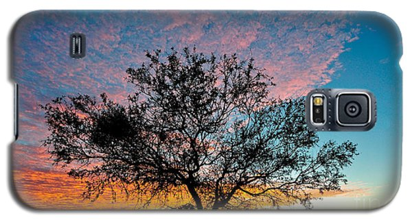 Outback Sunset Pano Galaxy S5 Case