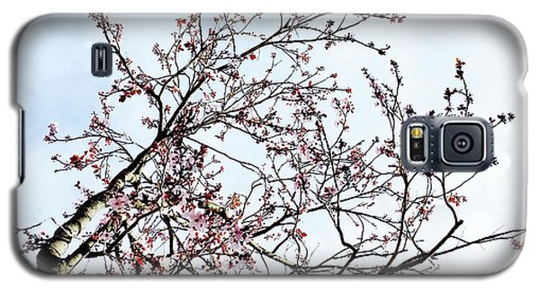 Galaxy S5 Case - Overhead Branches by Julie Gebhardt