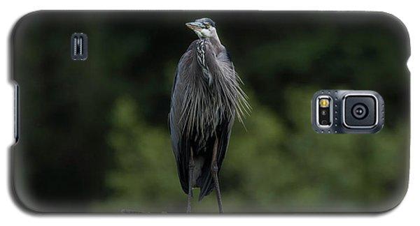 Overlooker  Galaxy S5 Case by Rod Wiens