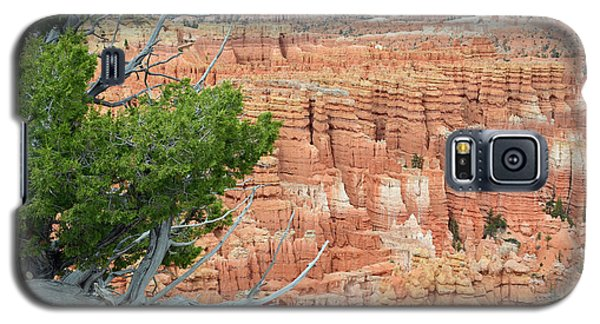 Galaxy S5 Case featuring the photograph Overlooking Bryce Canyon by Bruce Gourley