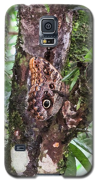 Owl Butterfly On A Tree Galaxy S5 Case