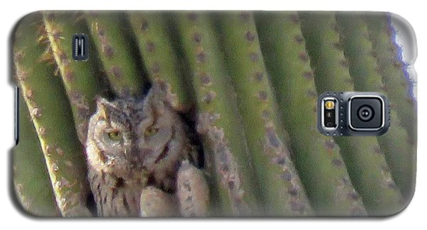 Owl In Cactus Burrow Galaxy S5 Case