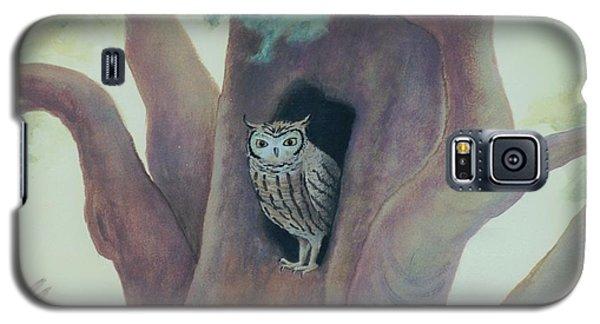Owl In Tree Galaxy S5 Case