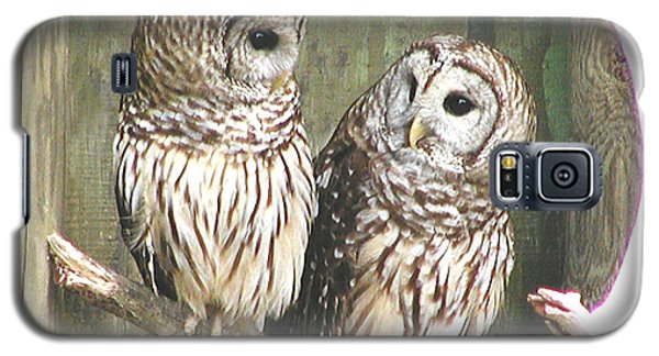 Owl Love You Forever Galaxy S5 Case