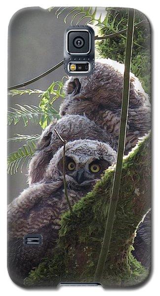 Owl Morning Galaxy S5 Case by I'ina Van Lawick