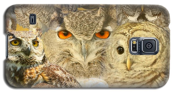 Owl You Need Is Love Galaxy S5 Case