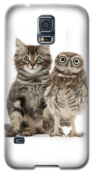 Owling And Yowling Galaxy S5 Case