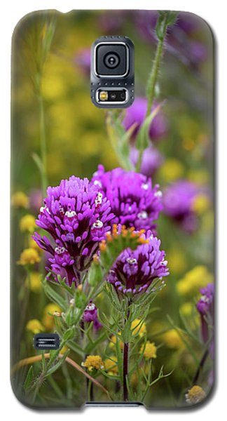 Galaxy S5 Case featuring the photograph Owl's Clover by Peter Tellone