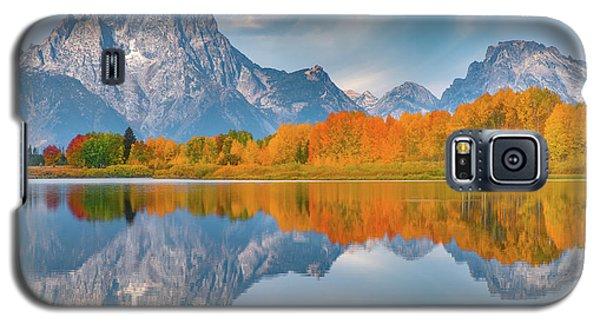 Oxbow's Autumn Galaxy S5 Case