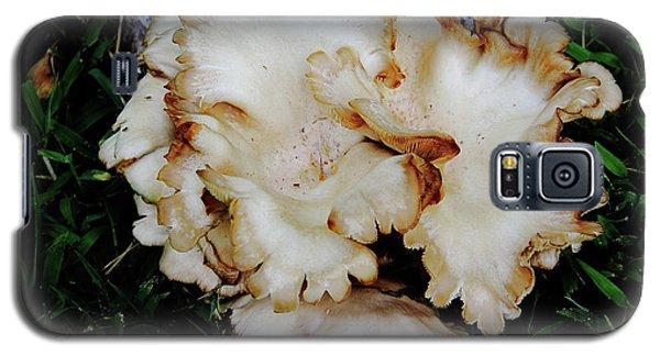 Oyster Mushroom Galaxy S5 Case