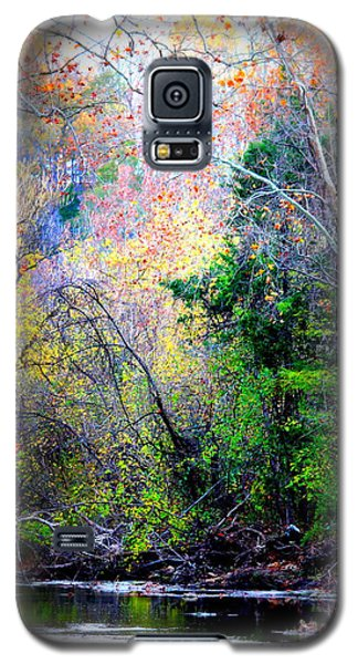 Ozarks Fall Galaxy S5 Case