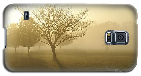 Ozarks Misty Golden Morning Sunrise Galaxy S5 Case