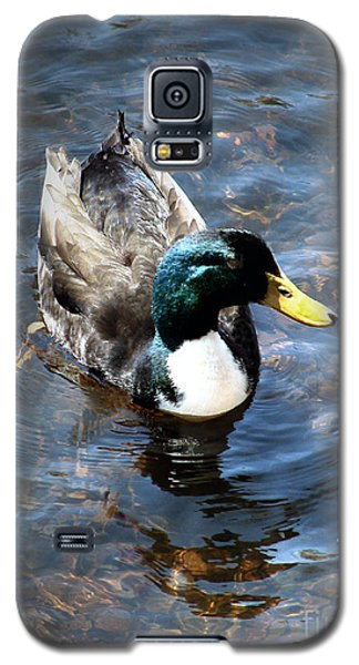 Paddling Peacefully Galaxy S5 Case by RC DeWinter