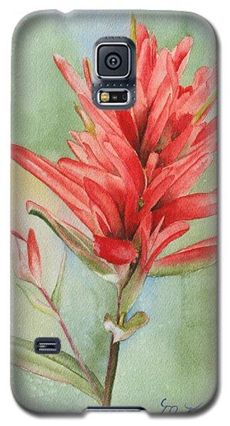 Paintbrush Portrait Galaxy S5 Case
