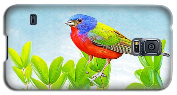 Bunting Galaxy S5 Case - Painted Bunting by Laura D Young