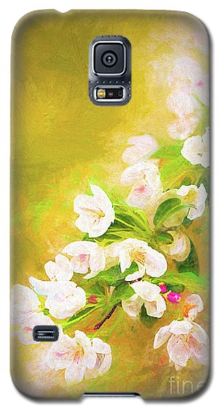 Painted Crabapple Blossoms In The Golden Evening Light Galaxy S5 Case