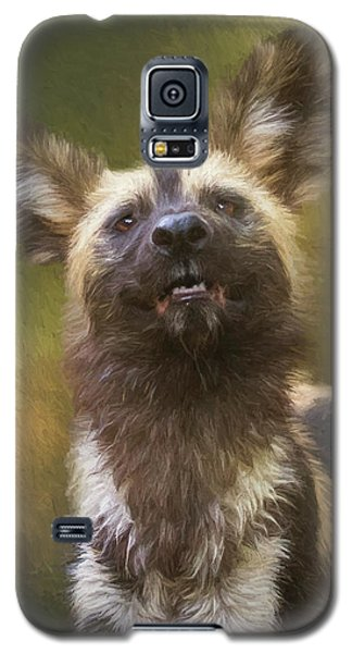 Painted Dog Portrait Galaxy S5 Case