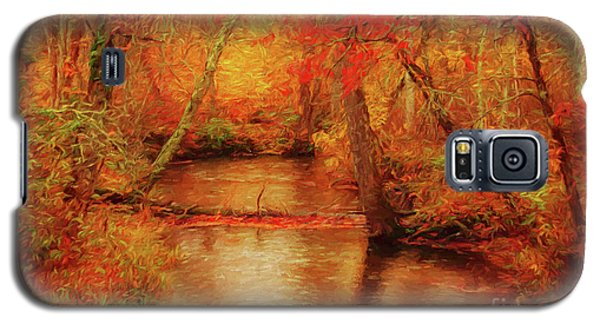 Painted Fall Galaxy S5 Case