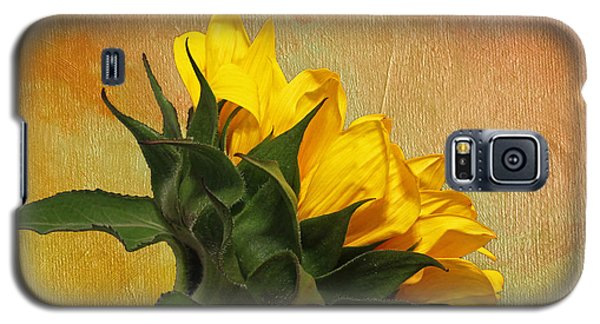 Galaxy S5 Case featuring the photograph Painted Golden Beauty by Judy Vincent