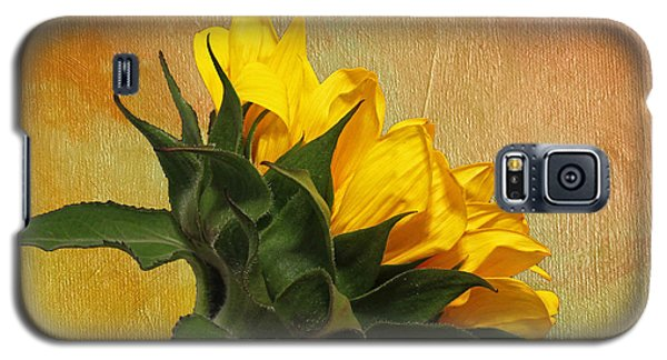 Painted Golden Beauty Galaxy S5 Case by Judy Vincent