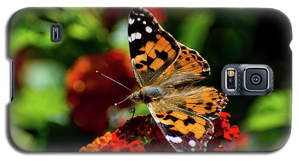 Painted Lady Butterfly Galaxy S5 Case