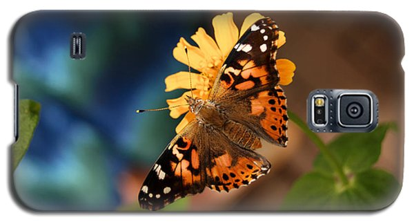Galaxy S5 Case featuring the photograph Painted Lady Butterfly by Eva Kaufman