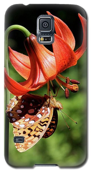 Painted Lady On Lily Galaxy S5 Case