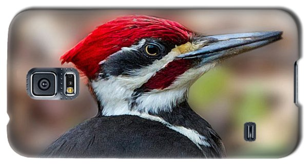Galaxy S5 Case featuring the painting Painted Pileated Woodpecker by John Haldane