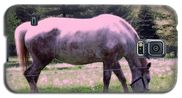Galaxy S5 Case featuring the photograph Painted Pony by Susan Carella
