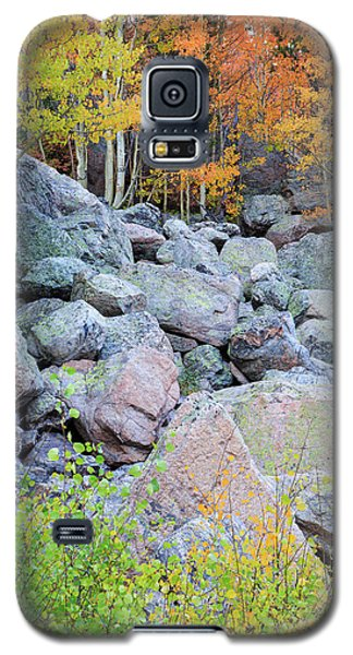 Galaxy S5 Case featuring the photograph Painted Rocks by David Chandler