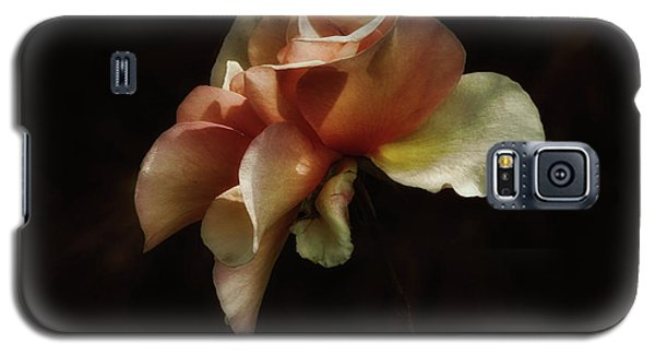 Painted Roses Galaxy S5 Case by Elaine Malott