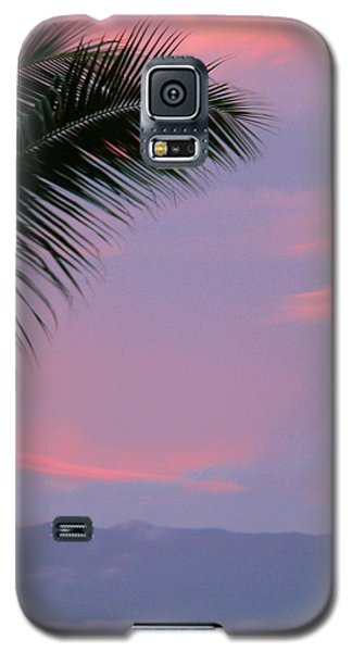 Galaxy S5 Case featuring the photograph Painted Sky by Debbie Karnes