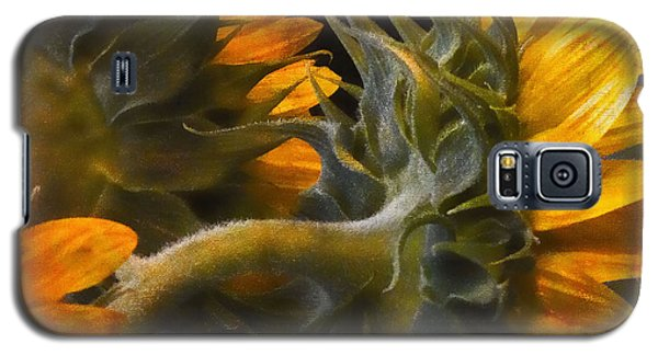 Painted Sun Flowers Galaxy S5 Case by John Rivera